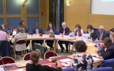 Auditions de l'ANDES et les élus d'outre-mer